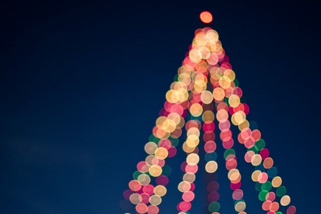 クリスマスツリーのライティング